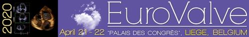 EUROVALVE 2020